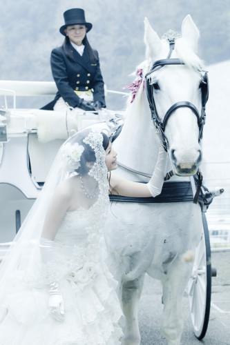白馬のパレード